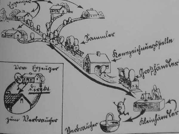 Der Weg des Eies - alte Illustration