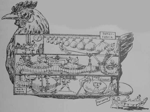 Eierfabrik Huhn - alte Illustration